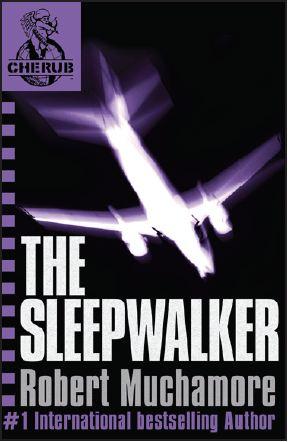 Tome 9 : The Sleepwalker (Crash)